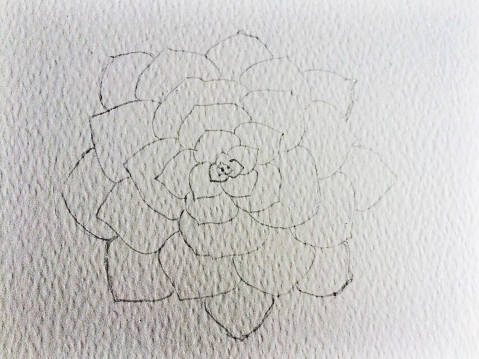 Watercolor Succulent Tutorial Part 1 Life Athon